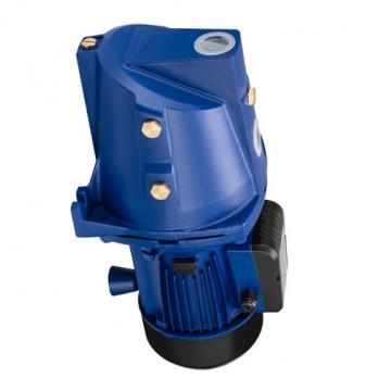 Denison PV10-2L1C-L00 Variable Displacement Piston Pump