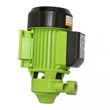 Denison PV20-1L1D-F02 Variable Displacement Piston Pump