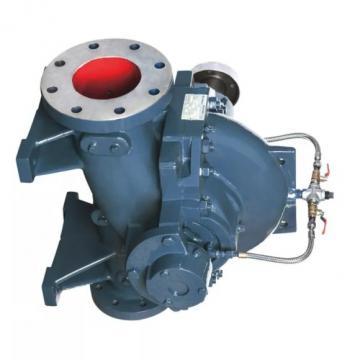 Yuken PV2R14-10-184-F-RAAA-31 Double Vane Pumps