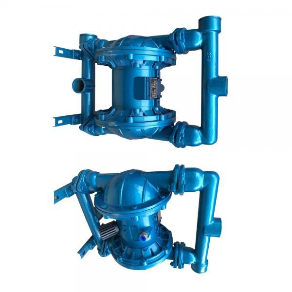 NACHI IPH-34B-10-32-11 Double IP Pump #1 image