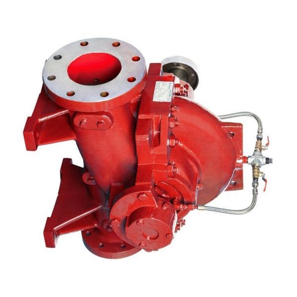 Rexroth A10VSO18DFR1/31L-PUC62N00 Axial Piston Variable Pump #1 image