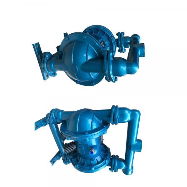 Sumitomo QT4242-25-20F Double Gear Pump #1 image