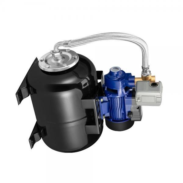 Sumitomo QT6143-200-31.5F Double Gear Pump #1 image