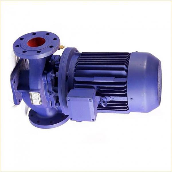 Sumitomo QT62-100F-A Gear Pump #1 image