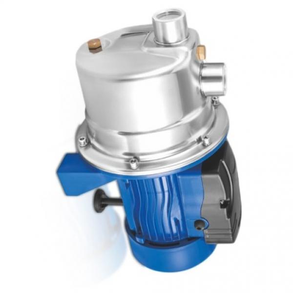 Sumitomo QT62-80E-A Gear Pump #1 image
