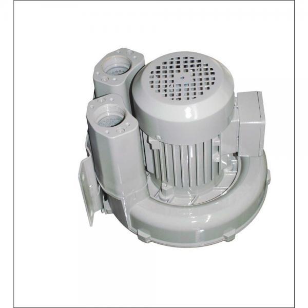 Yuken AR16-LR01C-20 Variable Displacement Piston Pumps #1 image